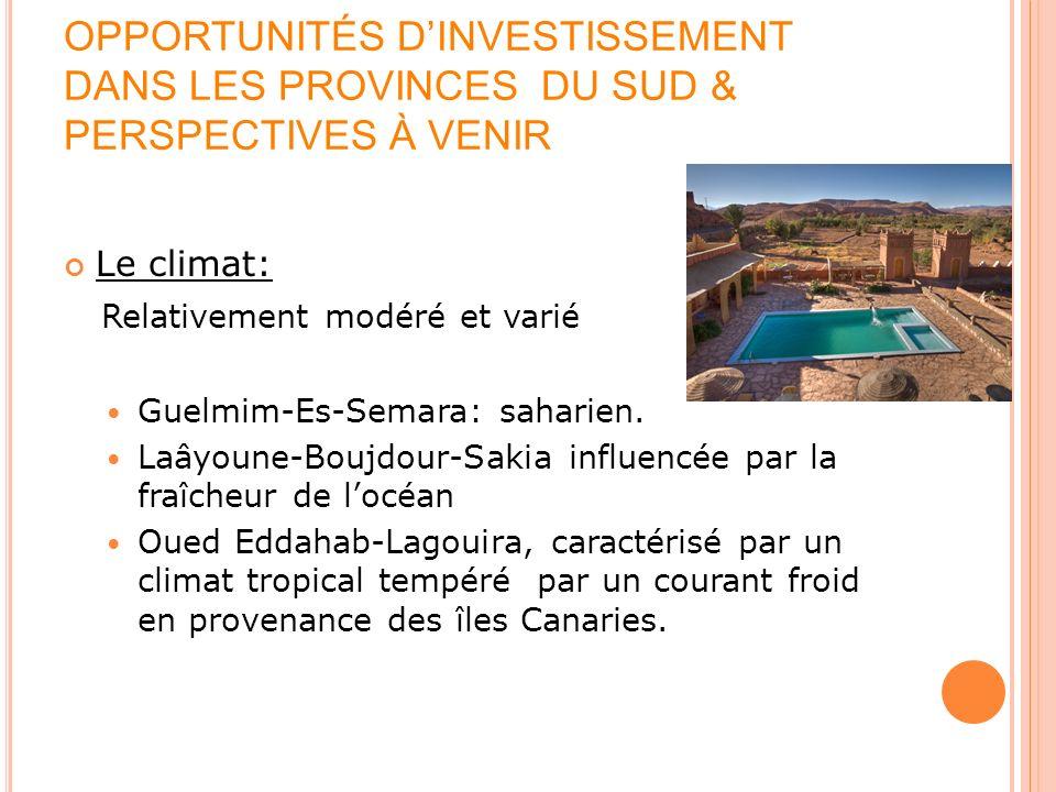 OPPORTUNITÉS DINVESTISSEMENT DANS LES PROVINCES DU SUD & PERSPECTIVES À VENIR Le climat: Relativement modéré et varié Guelmim-Es-Semara: saharien. Laâ