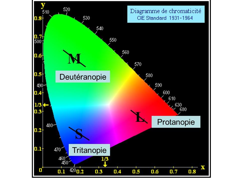 L M S Protanopie Deutéranopie Tritanopie