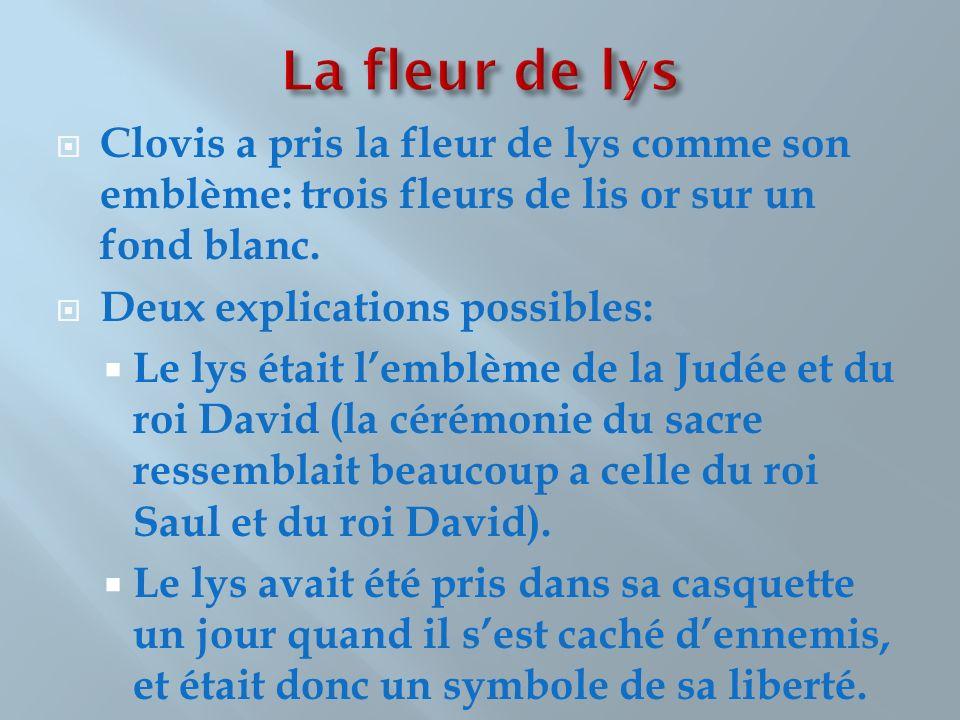 Clovis a pris la fleur de lys comme son emblème: trois fleurs de lis or sur un fond blanc. Deux explications possibles: Le lys était lemblème de la Ju