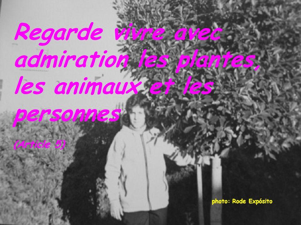 photo: Rode Expósito Regarde vivre avec admiration les plantes, les animaux et les personnes (Article 5)