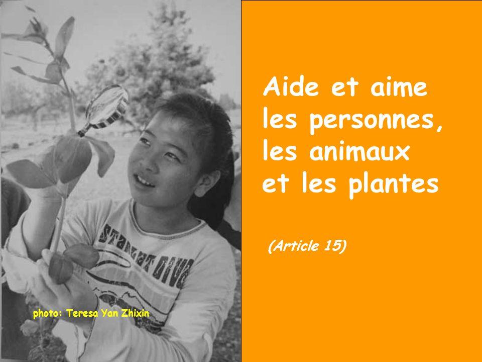 photo: Teresa Yan Zhixin Aide et aime les personnes, les animaux et les plantes (Article 15)