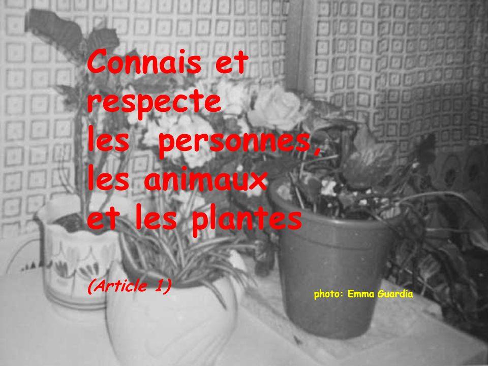photo: Emma Guardia Connais et respecte les personnes, les animaux et les plantes (Article 1)