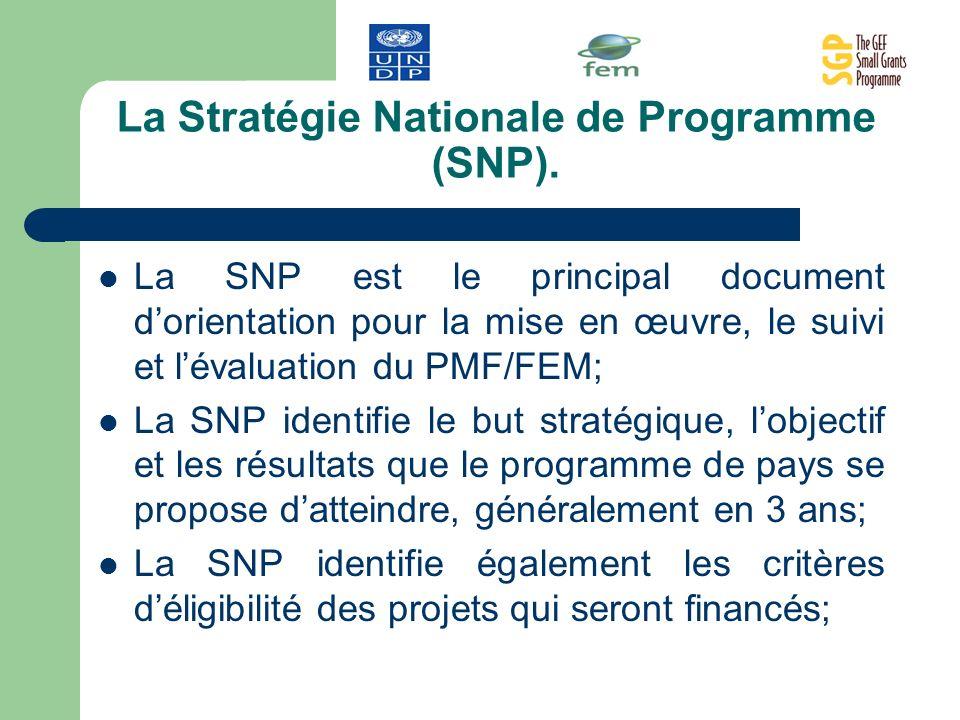 La Stratégie Nationale de Programme (SNP). La SNP est le principal document dorientation pour la mise en œuvre, le suivi et lévaluation du PMF/FEM; La