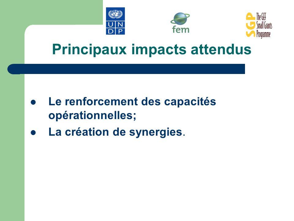 Principaux impacts attendus Le renforcement des capacités opérationnelles; La création de synergies.