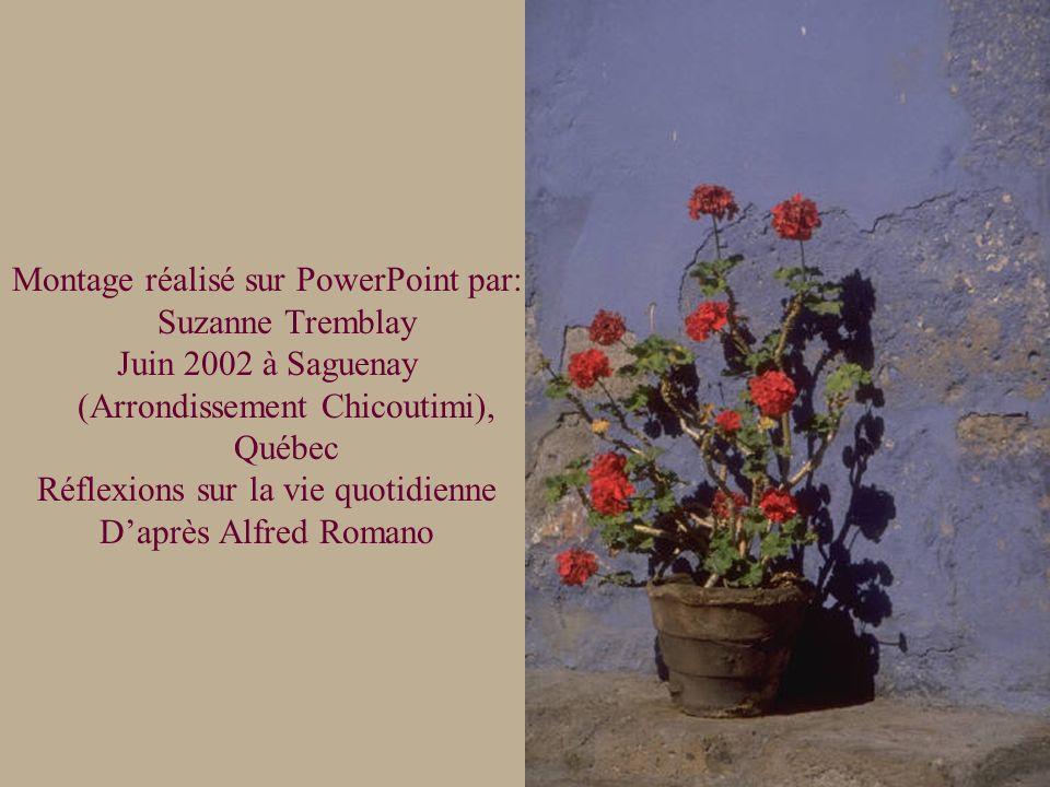 Montage réalisé sur PowerPoint par: Suzanne Tremblay Juin 2002 à Saguenay (Arrondissement Chicoutimi), Québec Réflexions sur la vie quotidienne Daprès