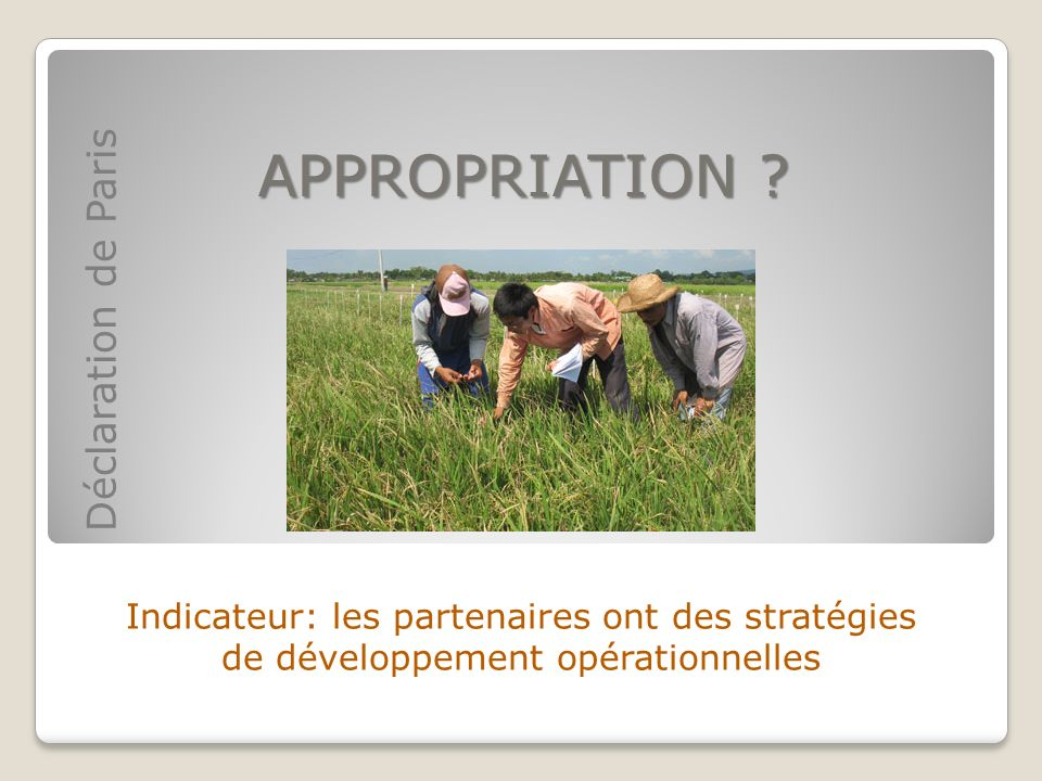 APPROPRIATION ? Indicateur: les partenaires ont des stratégies de développement opérationnelles Déclaration de Paris