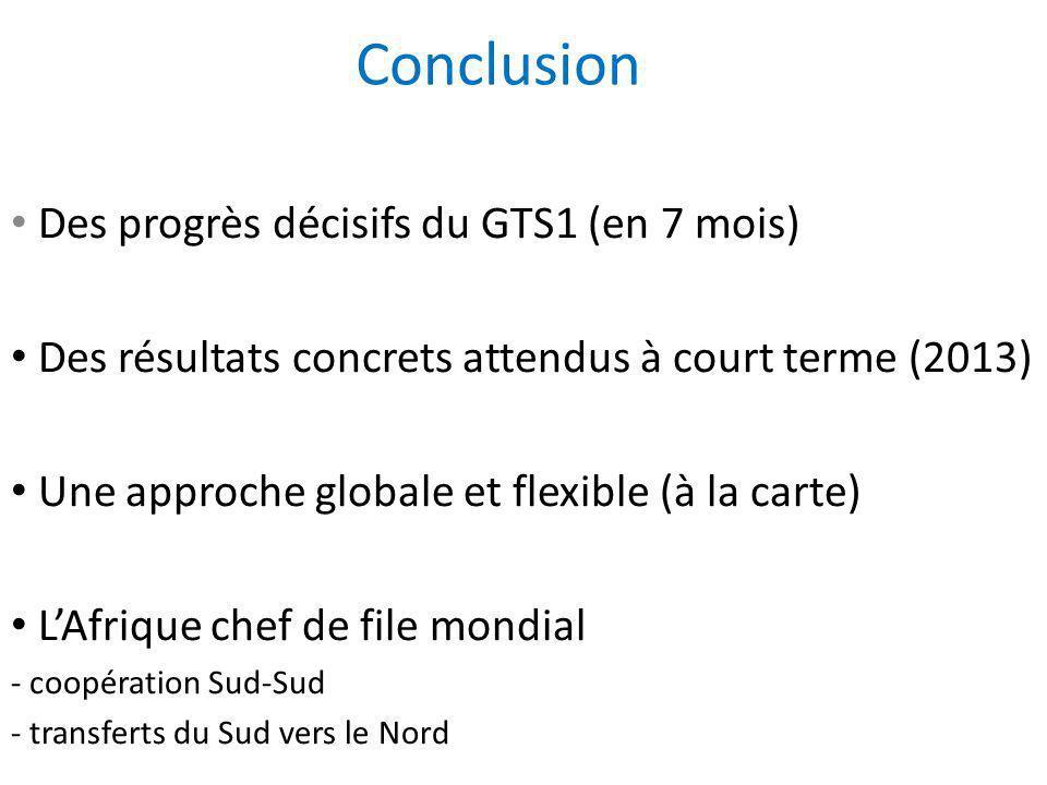 Conclusion Des progrès décisifs du GTS1 (en 7 mois) Des résultats concrets attendus à court terme (2013) Une approche globale et flexible (à la carte)