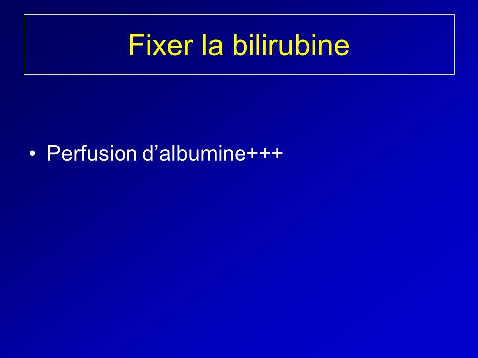Fixer la bilirubine Perfusion dalbumine+++