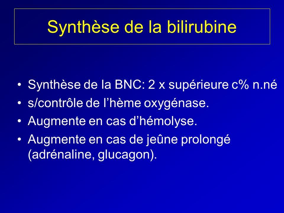 Synthèse de la bilirubine Synthèse de la BNC: 2 x supérieure c% n.né s/contrôle de lhème oxygénase. Augmente en cas dhémolyse. Augmente en cas de jeûn