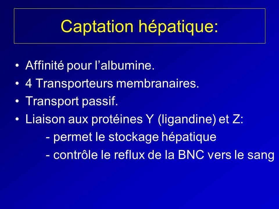 Captation hépatique: Affinité pour lalbumine. 4 Transporteurs membranaires. Transport passif. Liaison aux protéines Y (ligandine) et Z: - permet le st