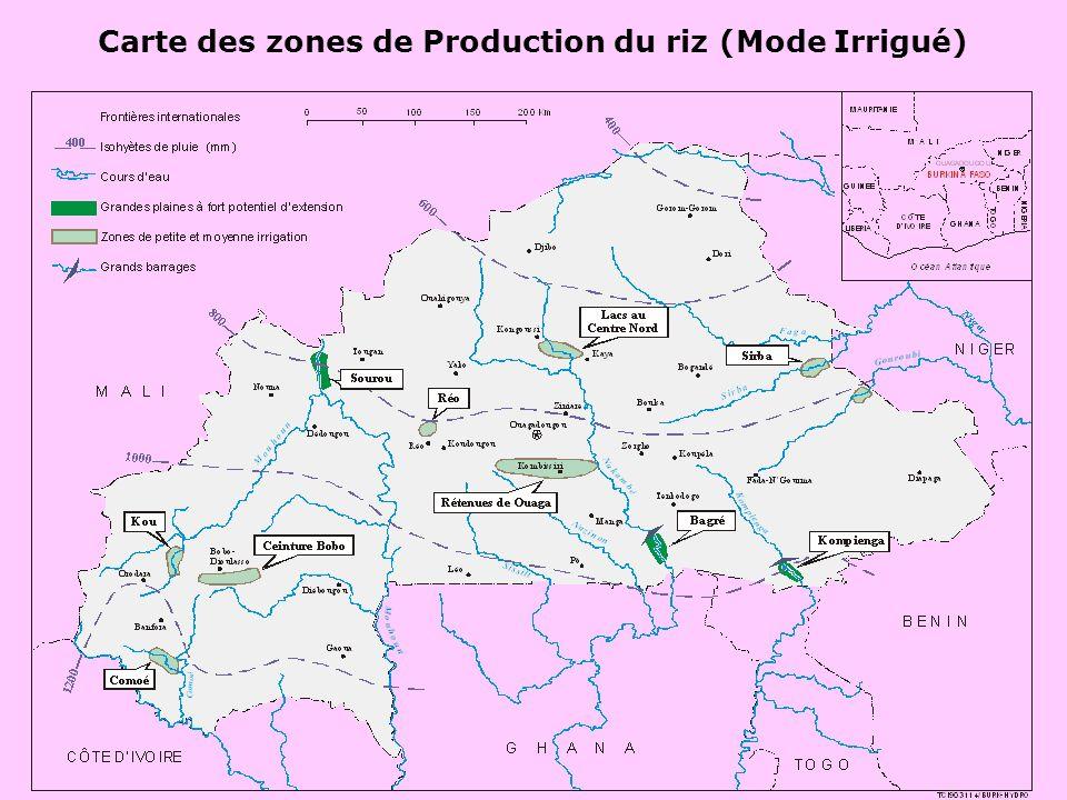 Priorités agro-écologiques 3 modes de riziculture sont pratiqués au BF: Irrigué, Bas-fonds et Pluvial; La priorité est accordée aux 3 modes de riziculture pour laccroissement de la production; AnnéeRiz pluvial strictBas-fondsIrrigué (double campagne)TOTAL Sup (Ha) Rdt (T/Ha) Prod (T) Sup (Ha) Rdt (T/Ha) Prod (T) Sup (Ha) Rdt (T/Ha) CoefProd (T)Sup (Ha) Prod (T) 2008 120001,1013200470002,5117500125005,51,5210450071500216883 2018 350002,58750011000044400003000071,81380000175000787500