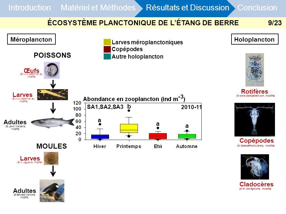 Introduction Matériel et Méthodes Résultats et Discussion Conclusion Larves méroplanctoniques Copépodes Autre holoplancton 2010-11 SA1,SA2,SA3 a a a b