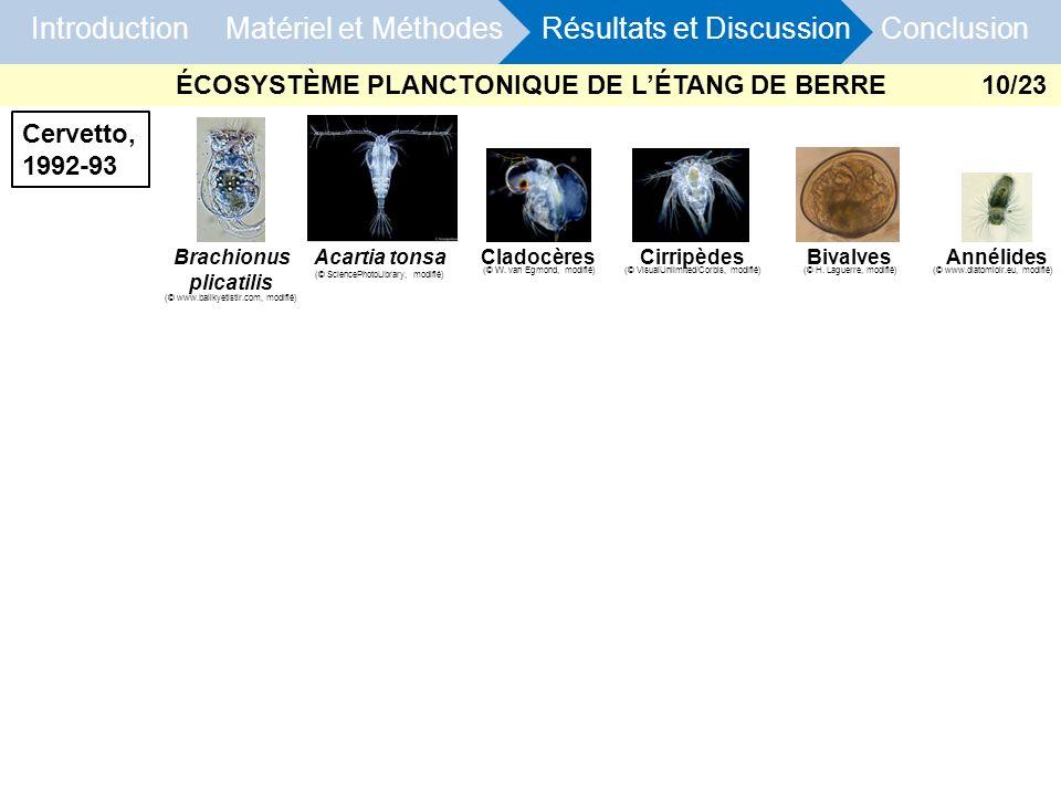 Introduction Matériel et Méthodes Résultats et Discussion Conclusion CirripèdesBivalvesBrachionus plicatilis CladocèresAcartia tonsa Cervetto, 1992-93