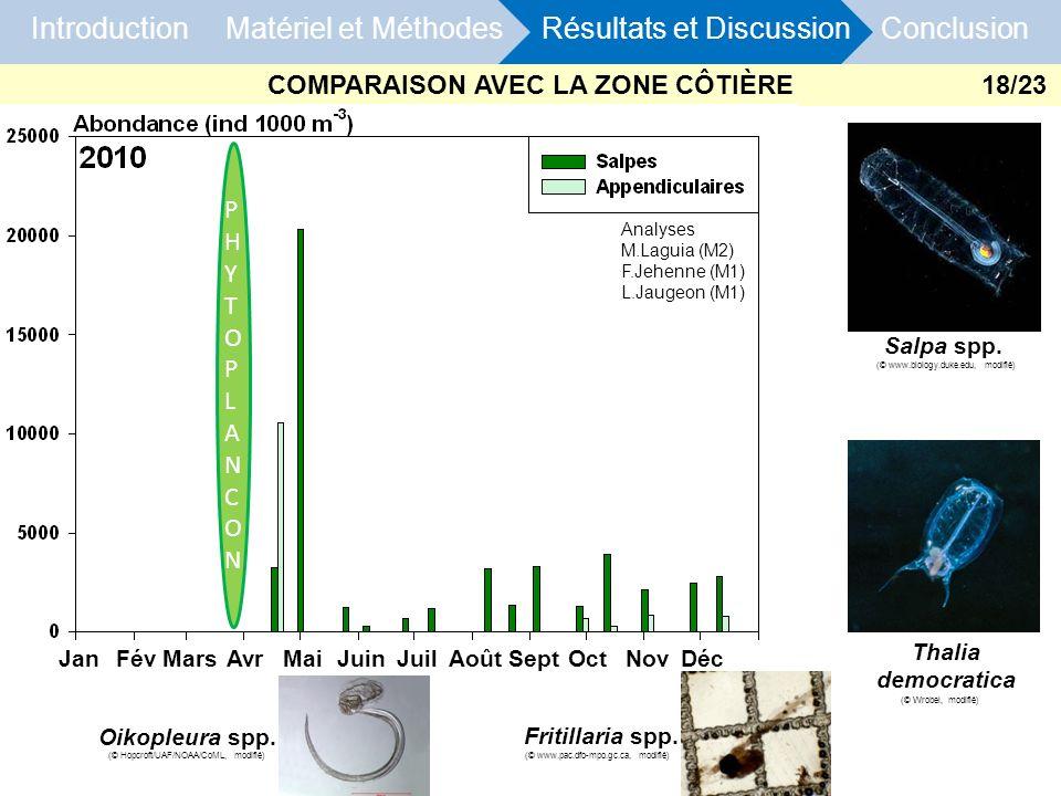 Introduction Matériel et Méthodes Résultats et Discussion Conclusion COMPARAISON AVEC LA ZONE CÔTIÈRE PHYTOPLANCONPHYTOPLANCON Analyses M.Laguia (M2)