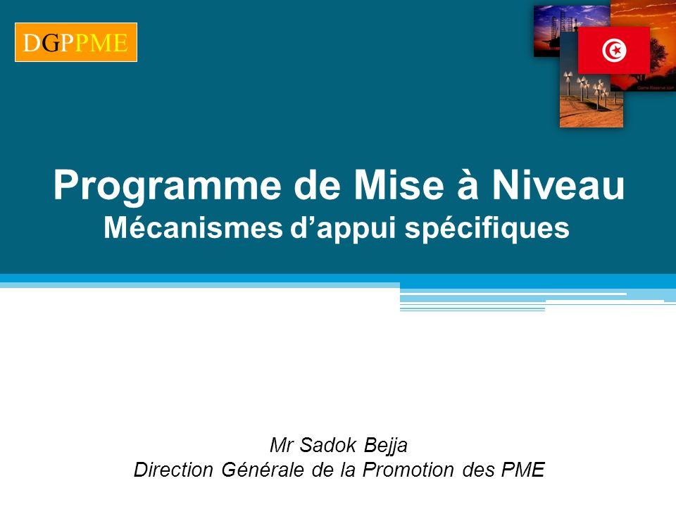 Mr Sadok Bejja Direction Générale de la Promotion des PME Programme de Mise à Niveau Mécanismes dappui spécifiques DGPPME