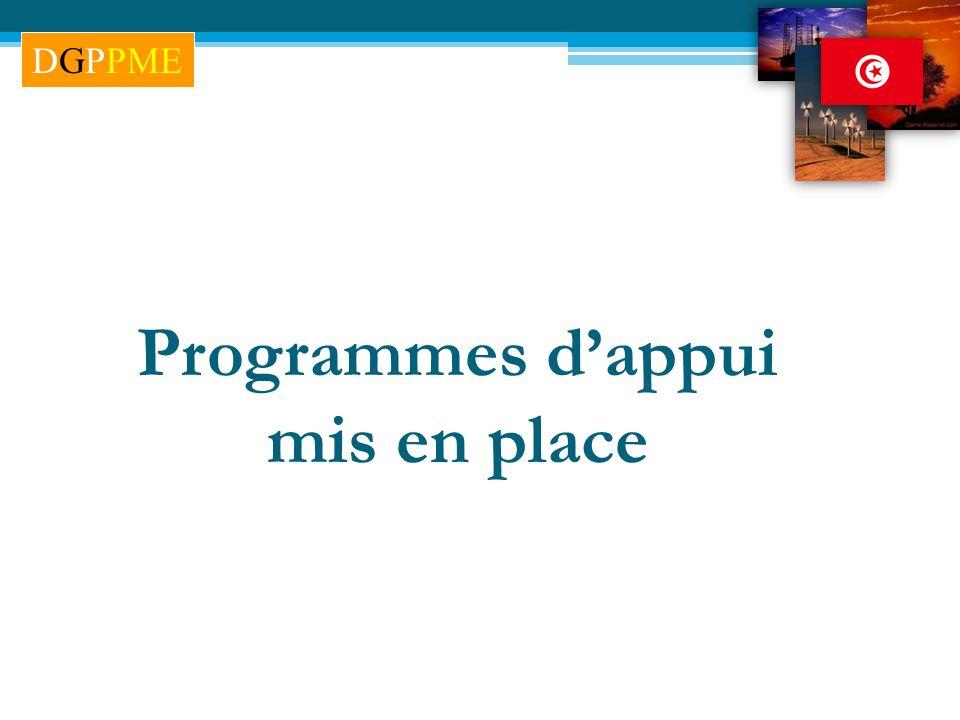 Programmes dappui mis en place DGPPME