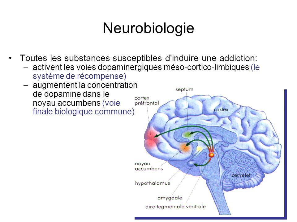 Neurobiologie Toutes les substances susceptibles d'induire une addiction: –activent les voies dopaminergiques méso-cortico-limbiques (le système de ré