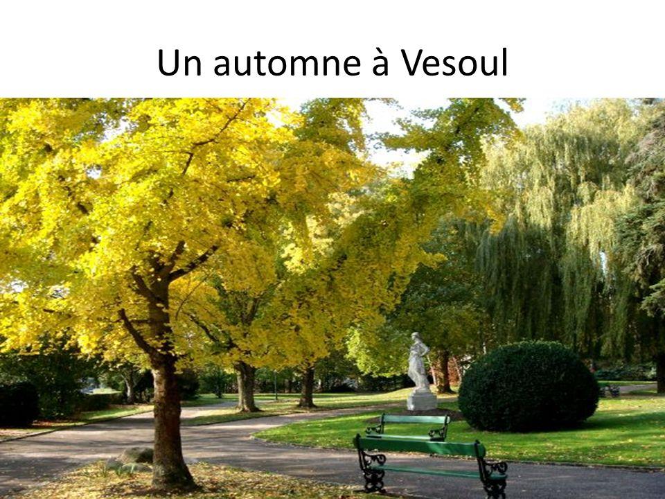 Un automne à Vesoul
