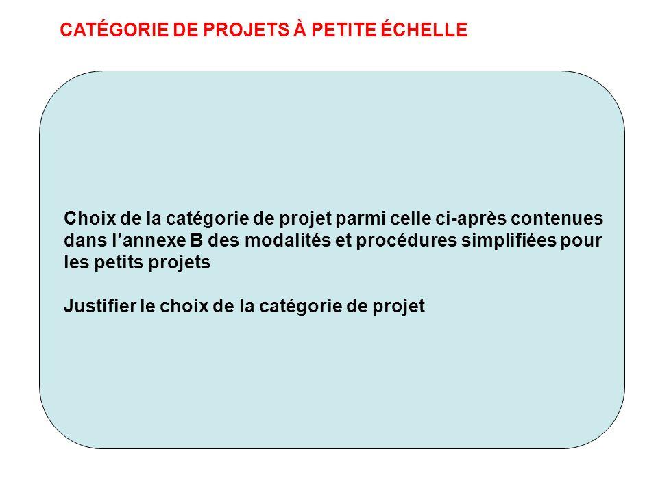 CATÉGORIE DE PROJETS À PETITE ÉCHELLE Choix de la catégorie de projet parmi celle ci-après contenues dans lannexe B des modalités et procédures simpli