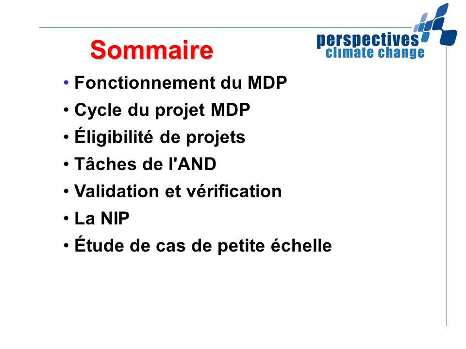 Sommaire Fonctionnement du MDP Cycle du projet MDP Éligibilité de projets Tâches de l'AND Validation et vérification La NIP Étude de cas de petite éch