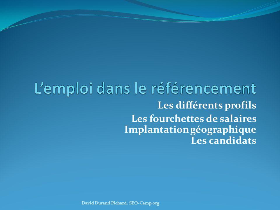 Les différents profils Les fourchettes de salaires Implantation géographique Les candidats David Durand Pichard, SEO-Camp.org