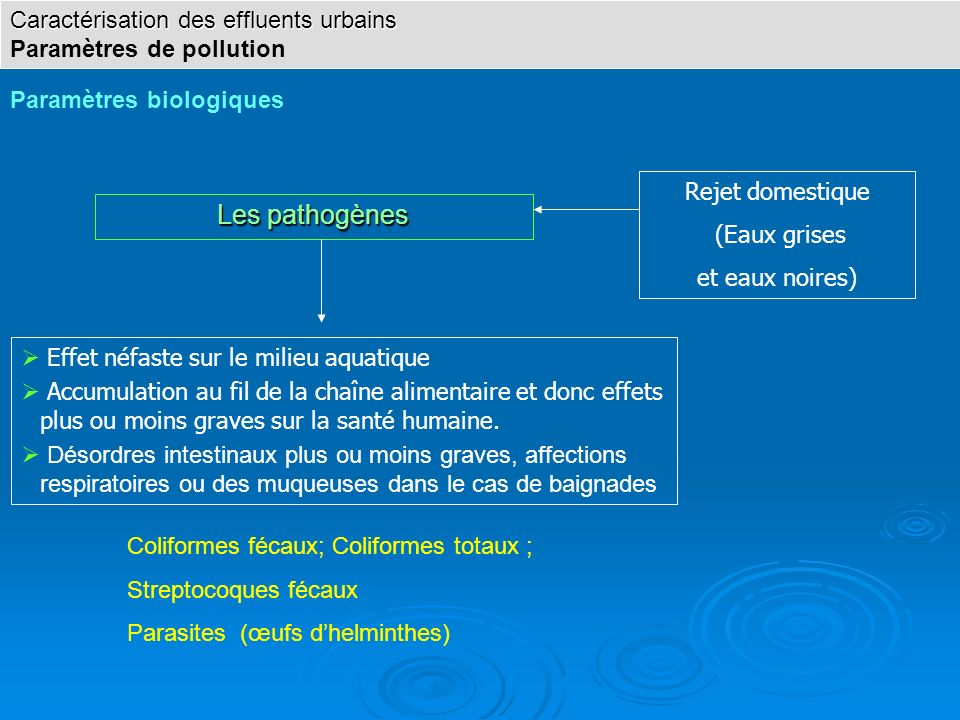 Les pathogènes Effet néfaste sur le milieu aquatique Accumulation au fil de la chaîne alimentaire et donc effets plus ou moins graves sur la santé hum