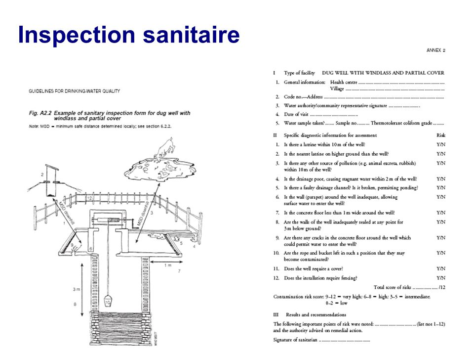 Inspection sanitaire