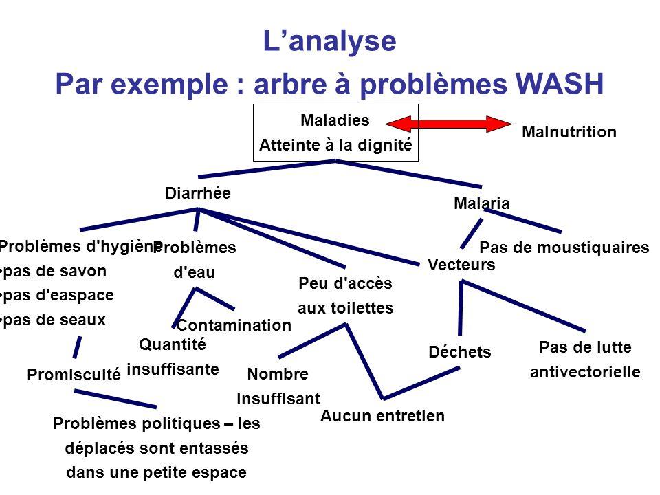 46 Lanalyse Par exemple : arbre à problèmes WASH Malnutrition Malaria Diarrhée Pas de moustiquaires Vecteurs Pas de lutte antivectorielle Déchets Peu