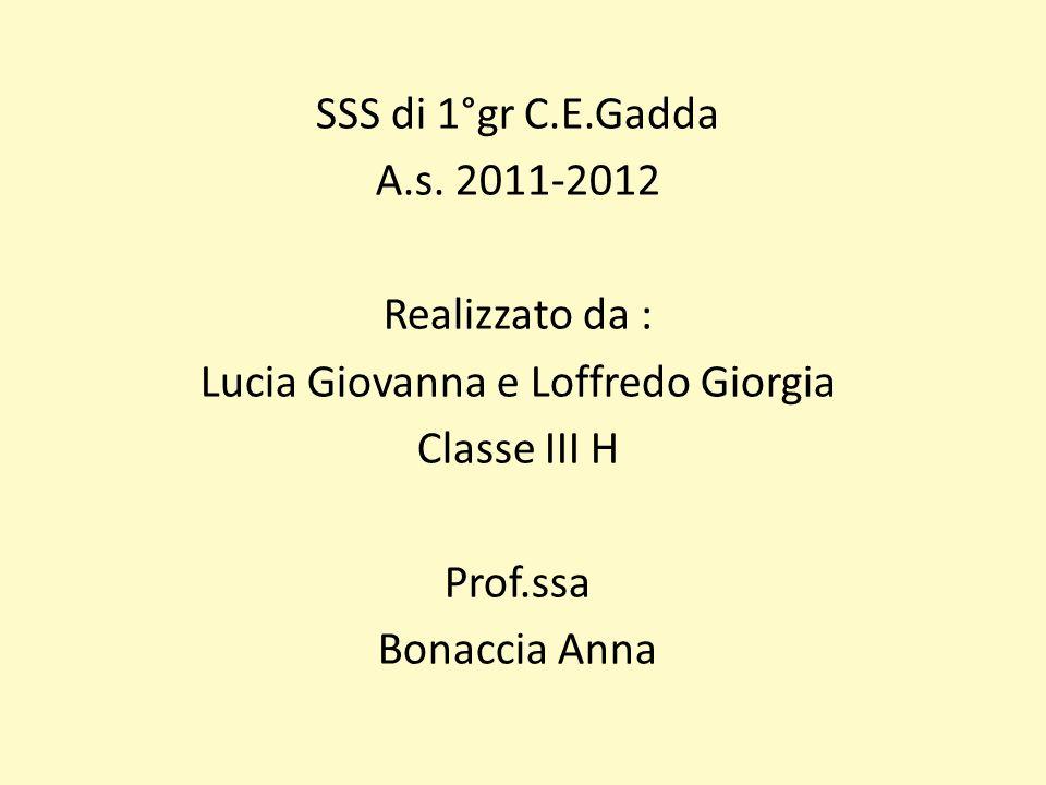SSS di 1°gr C.E.Gadda A.s.