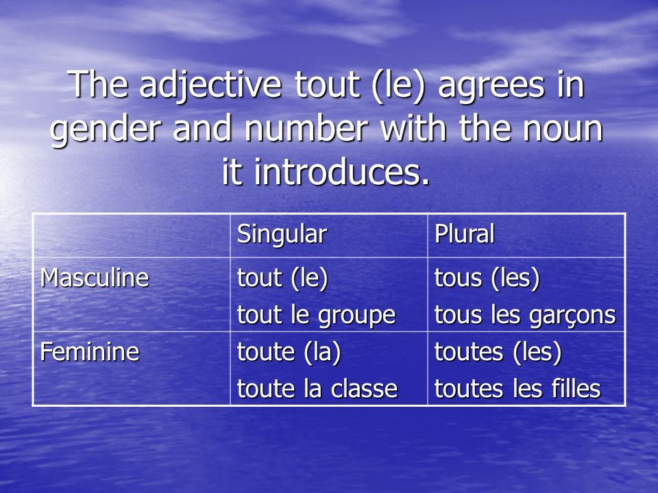 The adjective tout (le) agrees in gender and number with the noun it introduces.