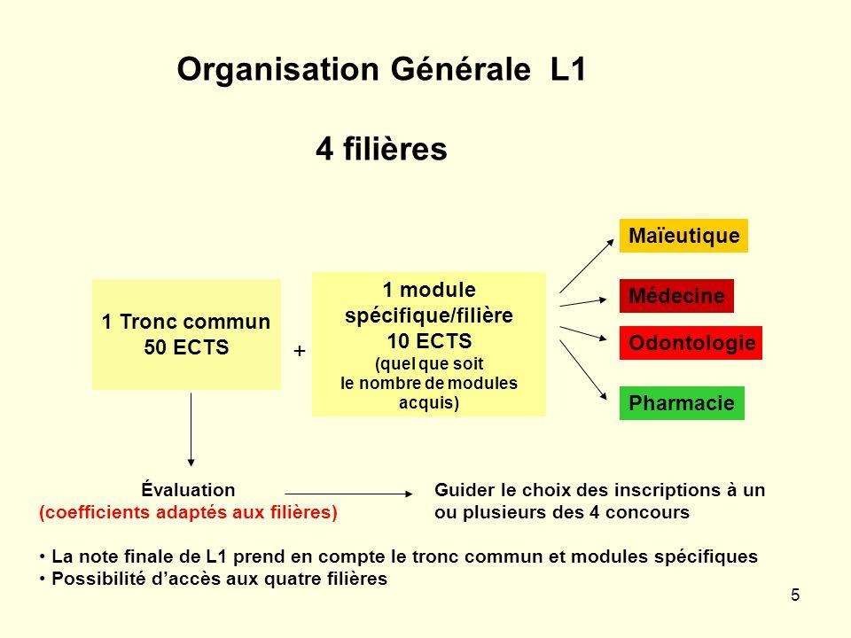 5 Organisation Générale L1 4 filières Médecine Pharmacie Maïeutique Odontologie 1 Tronc commun 50 ECTS Évaluation (coefficients adaptés aux filières)