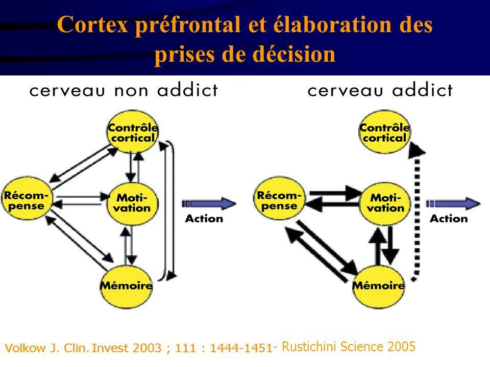 Cortex préfrontal et élaboration des prises de décision Mémoire de travail sous la dépendance dopaminergique Biais attentionnel Iowa gambling Task Str
