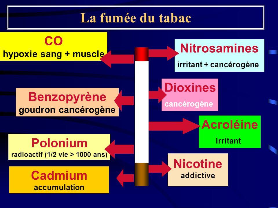 La fumée du tabac Nitrosamines irritant + cancérogène CO hypoxie sang + muscle Cadmium accumulation Benzopyrène goudron cancérogène Nicotine addictive