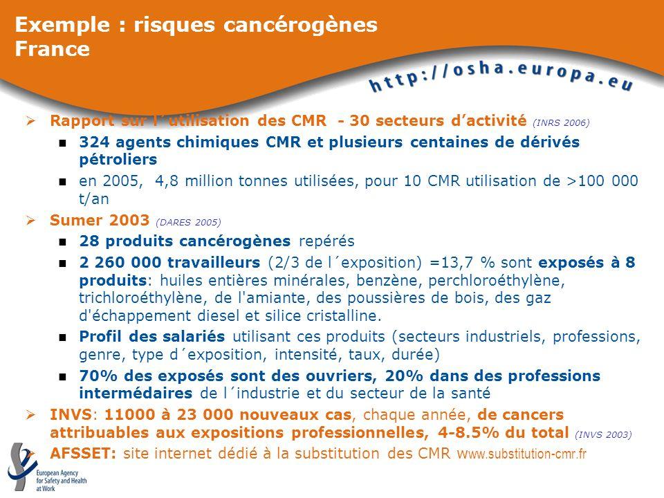 Exemple : risques cancérogènes France Rapport sur l´utilisation des CMR - 30 secteurs dactivité (INRS 2006) 324 agents chimiques CMR et plusieurs cent