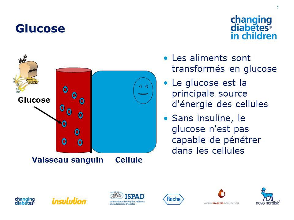 Glucose Les aliments sont transformés en glucose Le glucose est la principale source d'énergie des cellules Sans insuline, le glucose n'est pas capabl