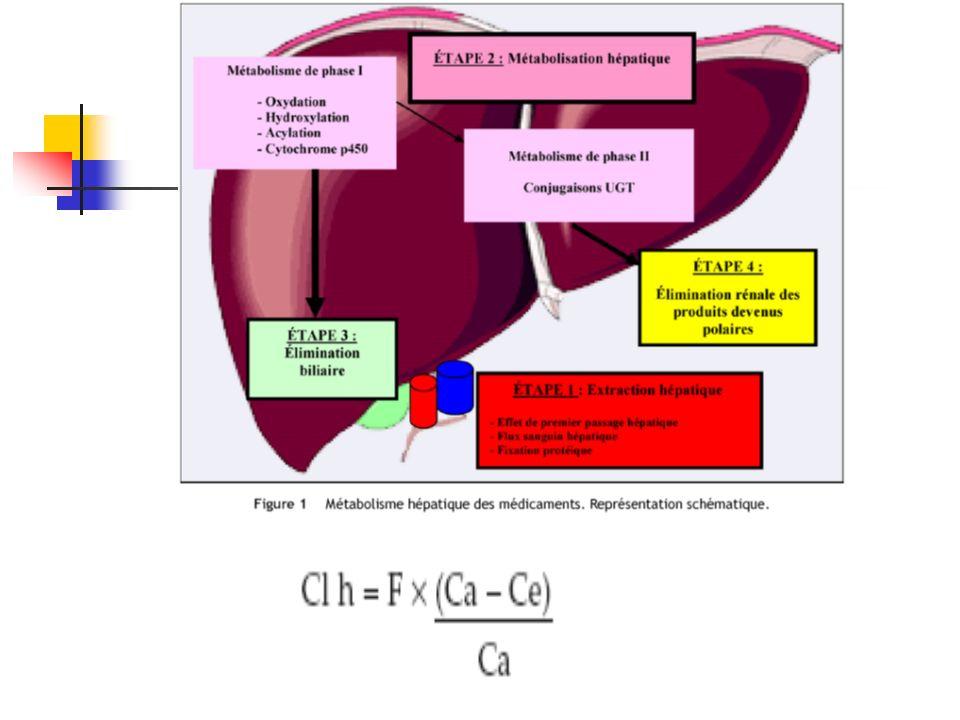Les différents étapes de lhépatotoxicité: