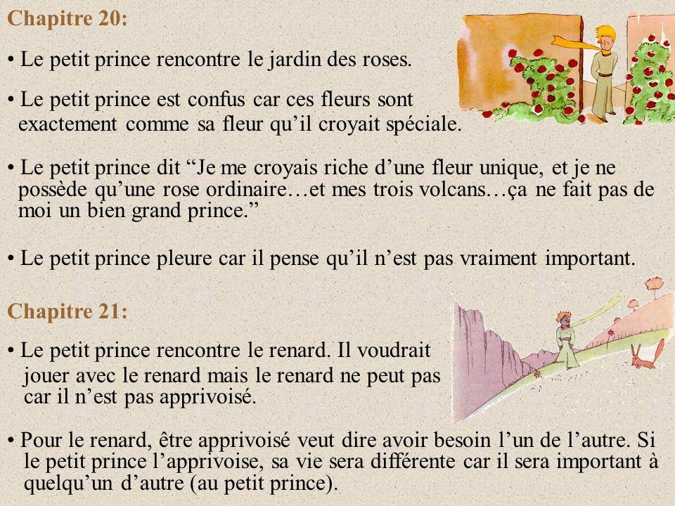 Chapitre 18: Le petit prince rencontre une fleur dans le désert et lui demande Où sont les hommes? La fleur lui répond: Les hommes? Il en existe, je c