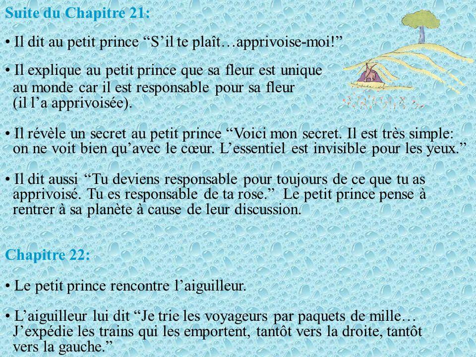 Chapitre 20: Le petit prince rencontre le jardin des roses. Le petit prince est confus car ces fleurs sont exactement comme sa fleur quil croyait spéc