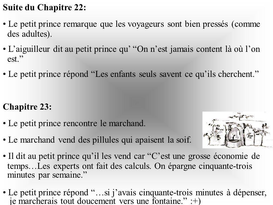 Suite du Chapitre 21: Il dit au petit prince Sil te plaît…apprivoise-moi! Il explique au petit prince que sa fleur est unique au monde car il est resp