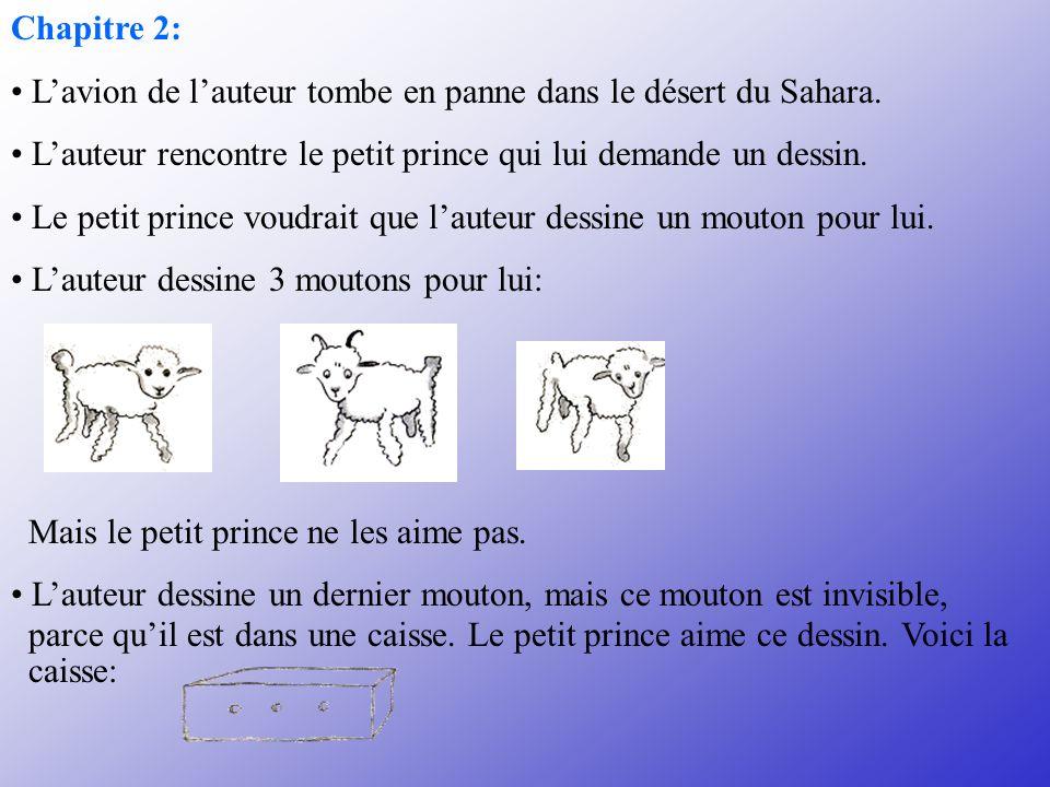 3.Le dessin accepté par le petit prince représente: A.