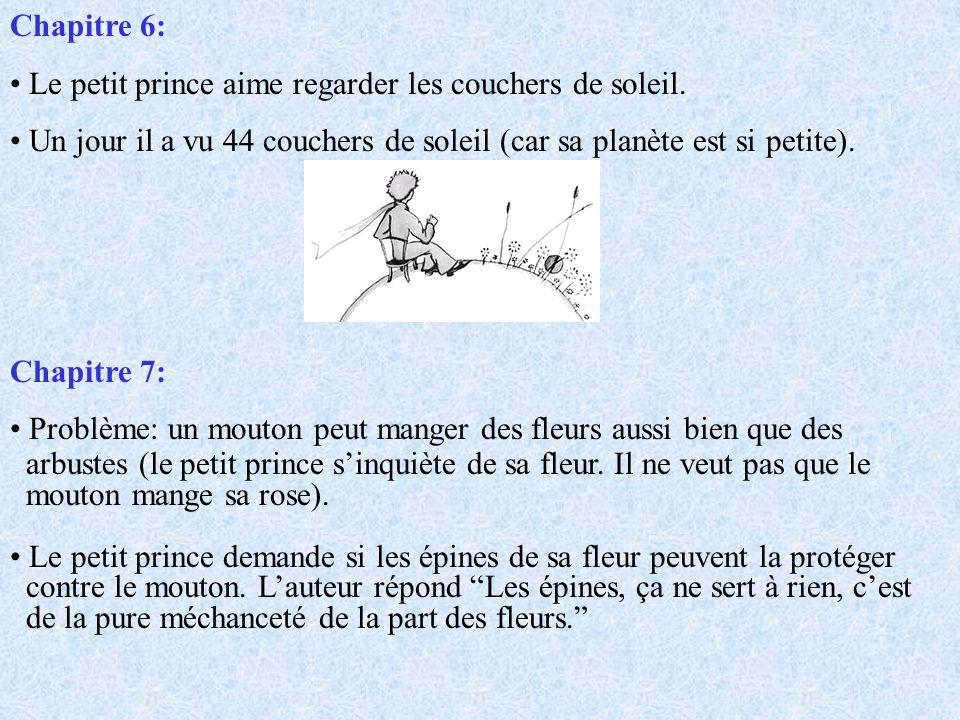 Suite du Chapitre 21: Il dit au petit prince Sil te plaît…apprivoise-moi.