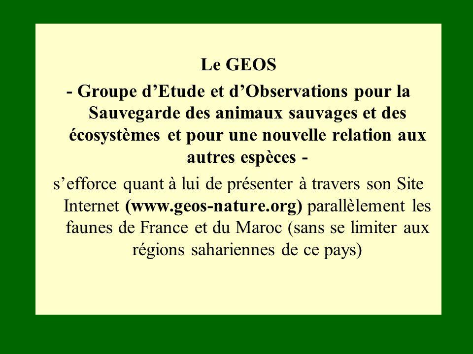 Le GEOS - Groupe dEtude et dObservations pour la Sauvegarde des animaux sauvages et des écosystèmes et pour une nouvelle relation aux autres espèces -