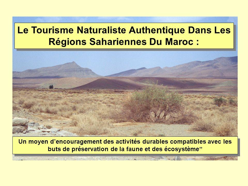 Le Tourisme Naturaliste Authentique Dans Les Régions Sahariennes Du Maroc : Un moyen dencouragement des activités durables compatibles avec les buts d
