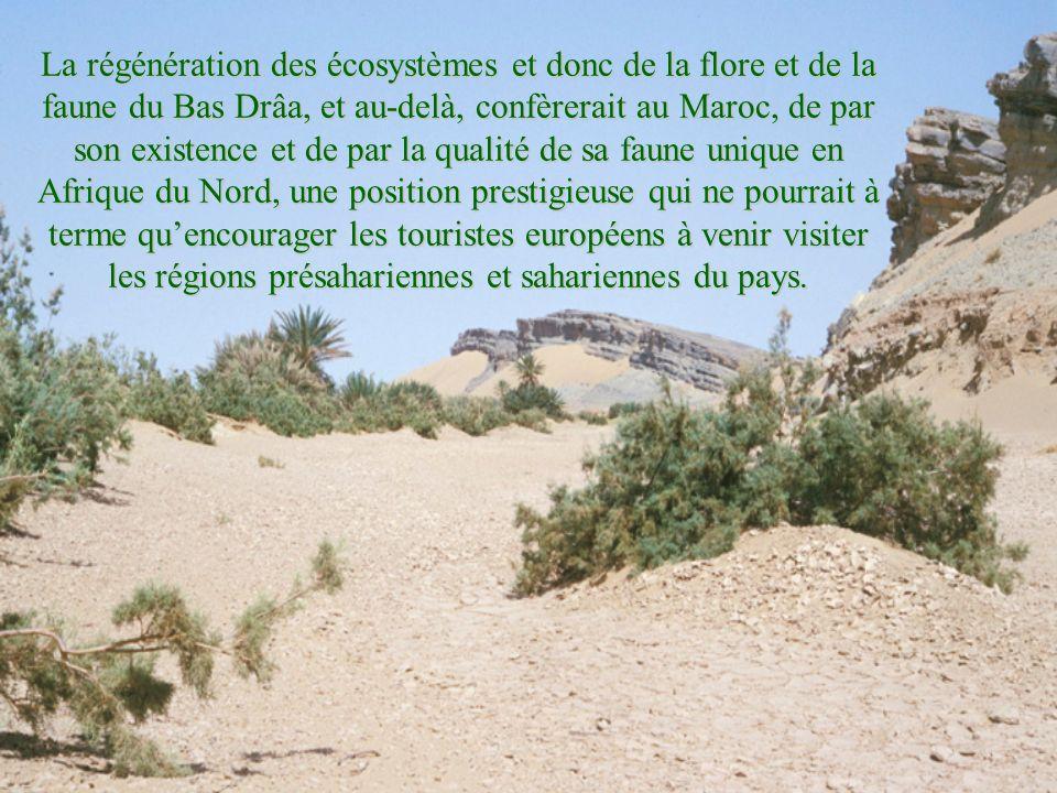 La régénération des écosystèmes et donc de la flore et de la faune du Bas Drâa, et au-delà, confèrerait au Maroc, de par son existence et de par la qu