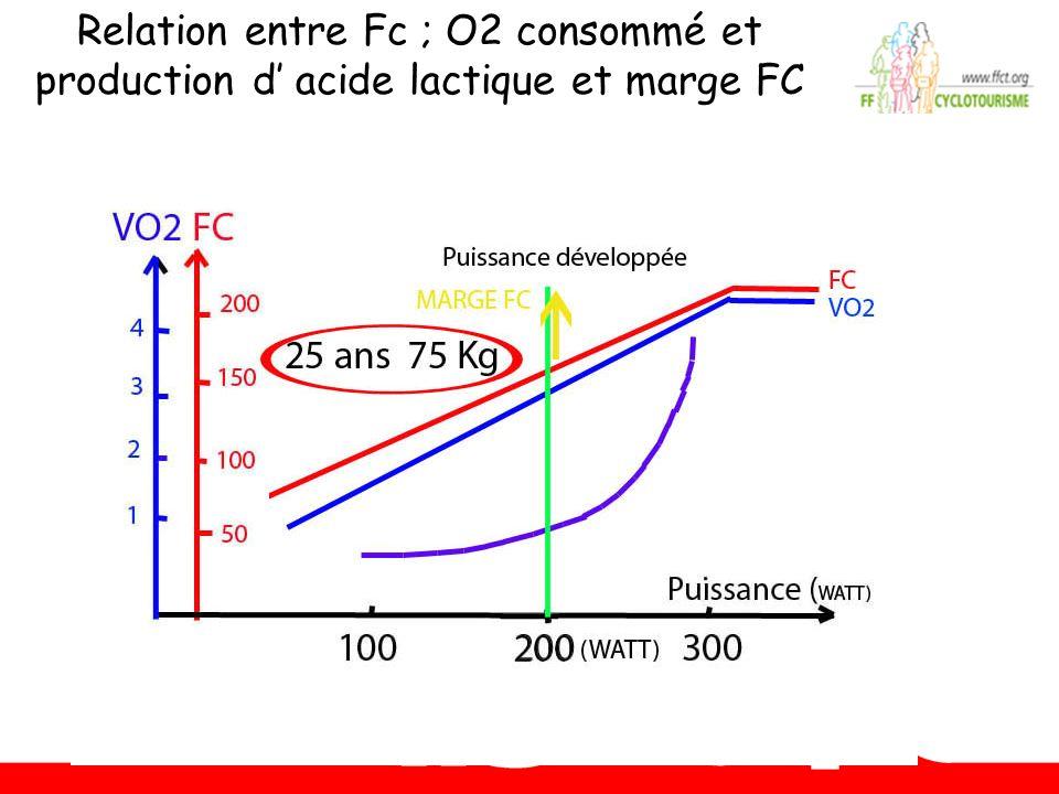 Relation entre Fc ; O2 consommé et production d acide lactique et marge FC