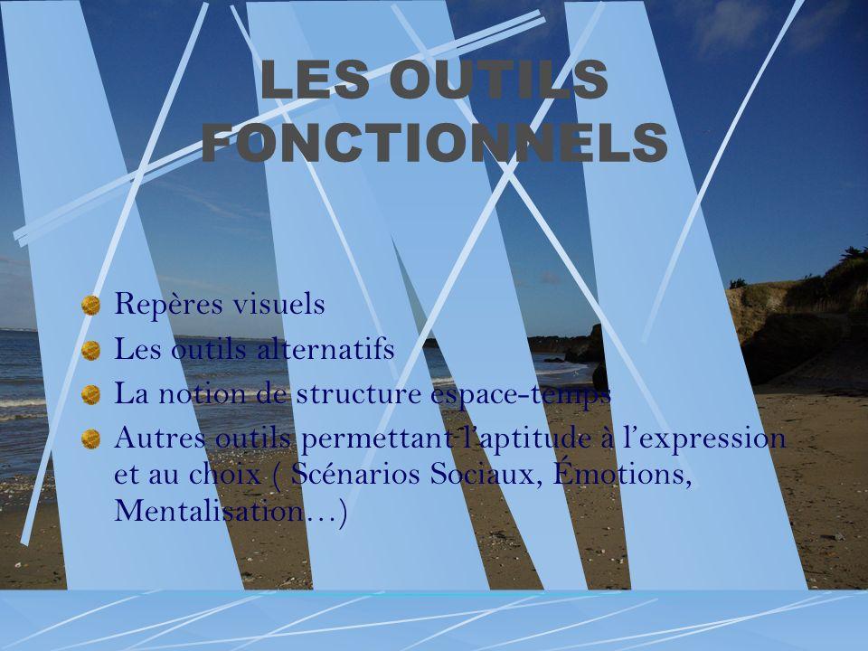 LES OUTILS FONCTIONNELS Repères visuels Les outils alternatifs La notion de structure espace-temps Autres outils permettant laptitude à lexpression et