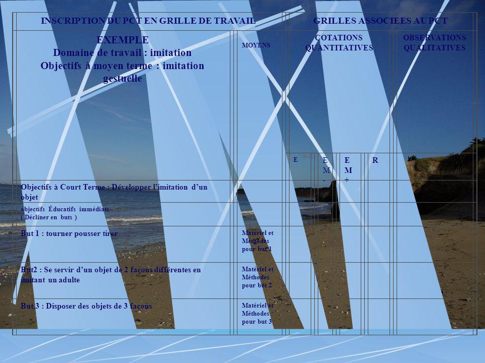 INSCRIPTION DU PCT EN GRILLE DE TRAVAILGRILLES ASSOCIEES AU PCT EXEMPLE Domaine de travail : imitation Objectifs à moyen terme : imitation gestuelle M