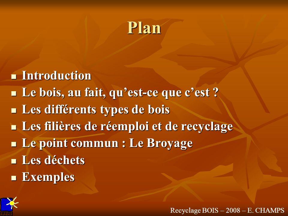 Plan Introduction Introduction Le bois, au fait, quest-ce que cest ? Le bois, au fait, quest-ce que cest ? Les différents types de bois Les différents