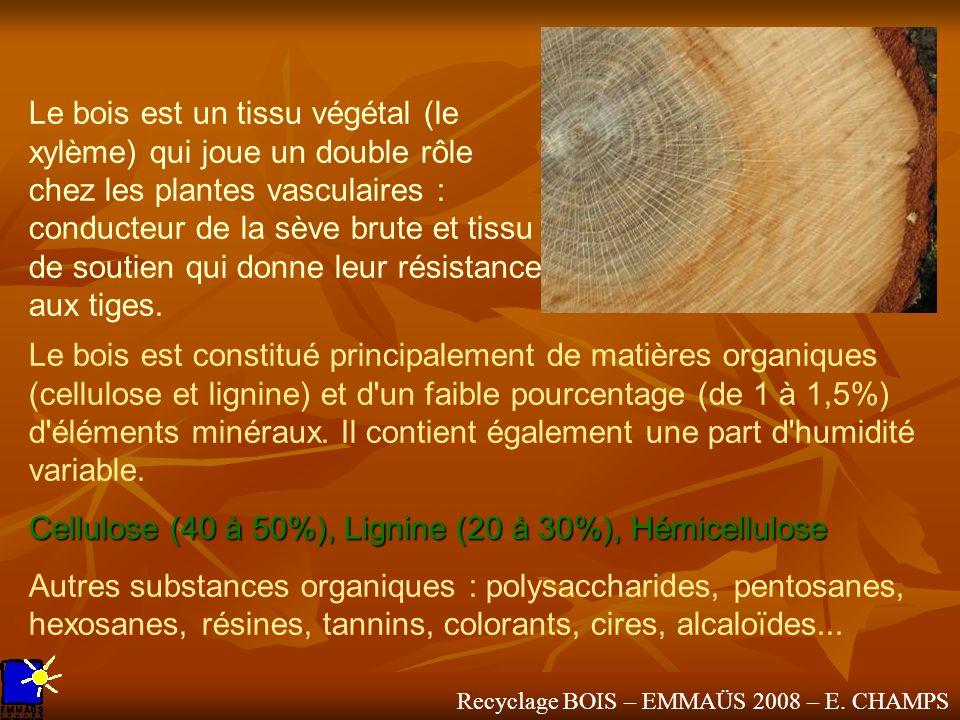 Le bois est un tissu végétal (le xylème) qui joue un double rôle chez les plantes vasculaires : conducteur de la sève brute et tissu de soutien qui do