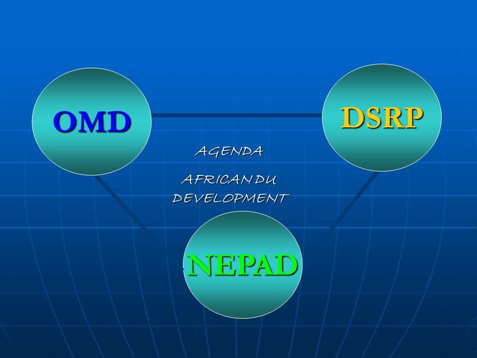 AGENDA AFRICAN DU DEVELOPMENT NEPAD OMD DSRP